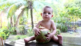 Infant  one year old baby sits on a wooden table against the background of palm trees and hugs a green fresh coconut. A face is ca. Rved on a coconut like a stock video footage