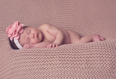 Infant posed sleeping Royalty Free Stock Image