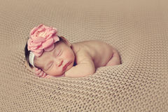 Infant posed sleeping Royalty Free Stock Photos