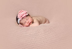 Infant posed sleeping Royalty Free Stock Images