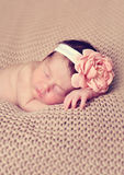 Infant posed sleeping Stock Photos