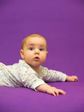Infant on a purple background. Stock Photo