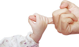 Infant's hand Stock Image