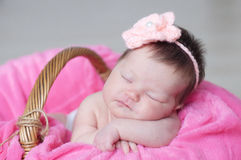 Infant sleeping in basket with knitted flower on head, baby girl lying on pink blanket, cute child, newborn Royalty Free Stock Image