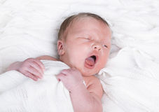 Infant tired. A few days old infant with diaper is in Baby cot Royalty Free Stock Photography