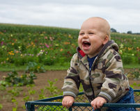 Infant in Wagon Royalty Free Stock Image