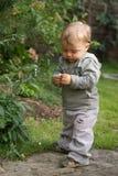 Infante do bebê no jardim Imagem de Stock Royalty Free
