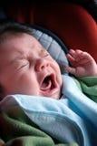 Infante gridante -- 3 mesi fotografie stock libere da diritti