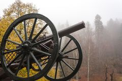Infantry cannon from Peles castle museum gate.  royalty free stock images