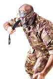 Infantry Man Royalty Free Stock Image