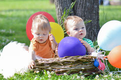 Infants brothers twins in party. Infant boys brothers in basket and balloons Royalty Free Stock Image
