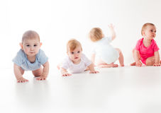 Infants crawling race royalty free stock images