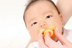 Infants and pacifier Stock Photography