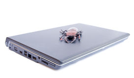 An infected lap top computer ? Stock Image