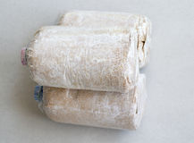 Infected mushroom bag. Stock Photos