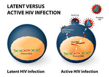 Infection par le HIV latente et active Photographie stock