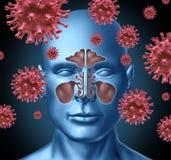 infekcja zimny wirus Zdjęcia Stock