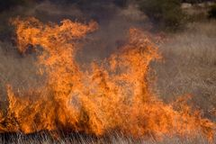 Inferno. A fire ravages grazing and threatens property stock photography