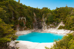 Inferno Crater Lake. Incredibly blue and highly acidic Inferno Crater Lake at Waimangu geothermal area, New Zealand Stock Photo