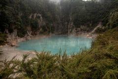 Inferno-Crater See in vulkanischem Tal Waimangu nahe Rotorua, Ne stockfotos