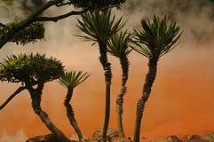 Inferno da lagoa do sangue - mola quente colorida Imagens de Stock Royalty Free