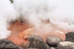 Inferno di jigoku di Umi a Beppu, Oita immagini stock