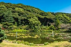 Inferno di Umi Jigoku o del mare a Beppu, Oita, Giappone fotografia stock libera da diritti