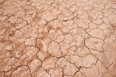 Infertile dry land Stock Photography