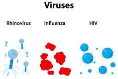 Infezione virale Immagini Stock