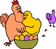 Infidel hen Stock Photography