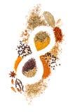 Infinidade de ervas da mistura da especiaria da nutrição, alecrins, cardamon, pimenta Imagem de Stock