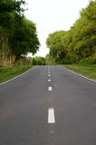 Infinite road. Road going into the distance among the green trees Royalty Free Stock Photos