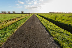 Infinitely long asphalt road in a rural area Royalty Free Stock Photos