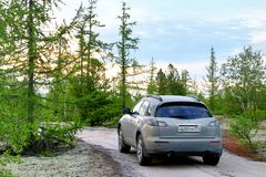 Infiniti FX35. Novyy Urengoy, Russia - June 26, 2017: Motor car Infiniti FX35 in the forest at the background of the sunset Royalty Free Stock Photo