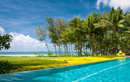 Infinity pool on a beach. A beautiful infinity swimming pool at a beach side resort with green grass and tress around Royalty Free Stock Photo