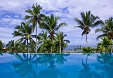 Infinity Pool with Coconut Trees. Sea view infinity pool with coconut trees at a resort in Kovalam, Kerala, India Royalty Free Stock Photo