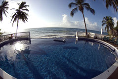 Infinity pool with float caribbean sea Stock Photos