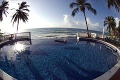 Infinity pool with float caribbean sea Stock Photos