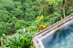 Infinity Pool with Jungle Panorama. Infinity Pool with green and lush Jungle Panorama Royalty Free Stock Photos