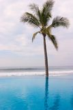 Infinity Pool - Mexico Royalty Free Stock Image