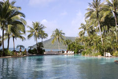 An infinity pool overlooking the ocean. An infinity pool at Hamilton Island resort and spa Stock Photos