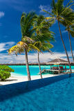 Infinity pool with palm trees over blue lagoon in Maldives Royalty Free Stock Photo