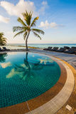 Infinity pool with sea views and palm trees Royalty Free Stock Photography