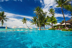 Infinity swimming pool on the beach with palm trees. Large infinity swimming pool on the beach with palm trees Royalty Free Stock Image