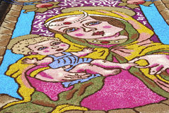 Infiorata of Castelraimondo Stock Photos