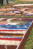 Infiorata de Genzano Imagen de archivo libre de regalías