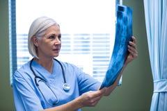 Infirmière examinant un rayon X photos stock