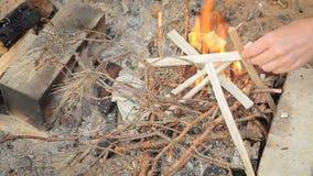 Inflamación del fuego de ramas y de hojas en un bosque seco almacen de video