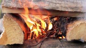 Inflaming campfire closeup stock footage