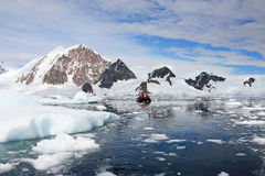 Inflatable boat full of tourists, watching for whales and seals, Antarctic Peninsula Royalty Free Stock Image